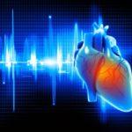 Illustration of a human heartbeat