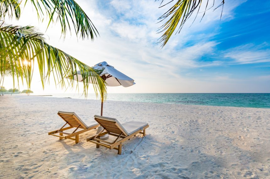 beach with palm tree and chairs