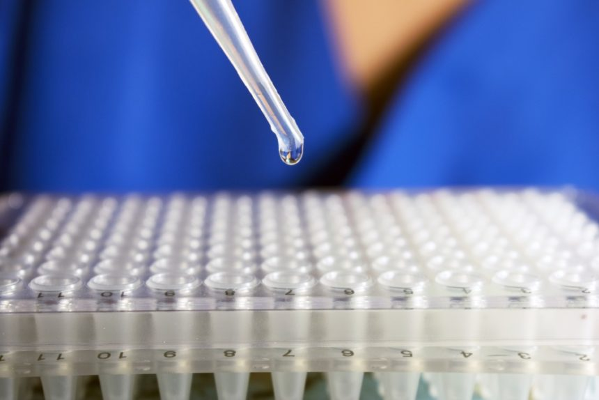 Investigator conducting stem cell research