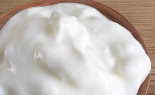 bowl of plain yogurt