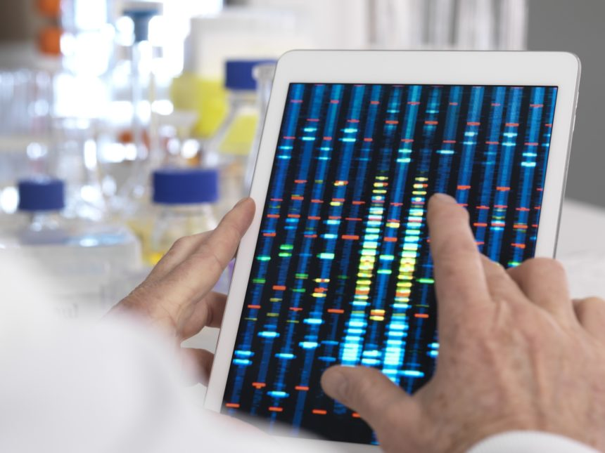 Researcher examining genetic test results