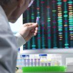 scientist, researcher examining DNA
