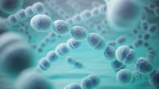 sepsis, infection, bacteria